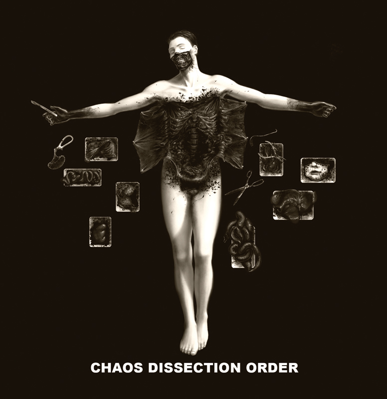 Chaos, Dissection, Order
